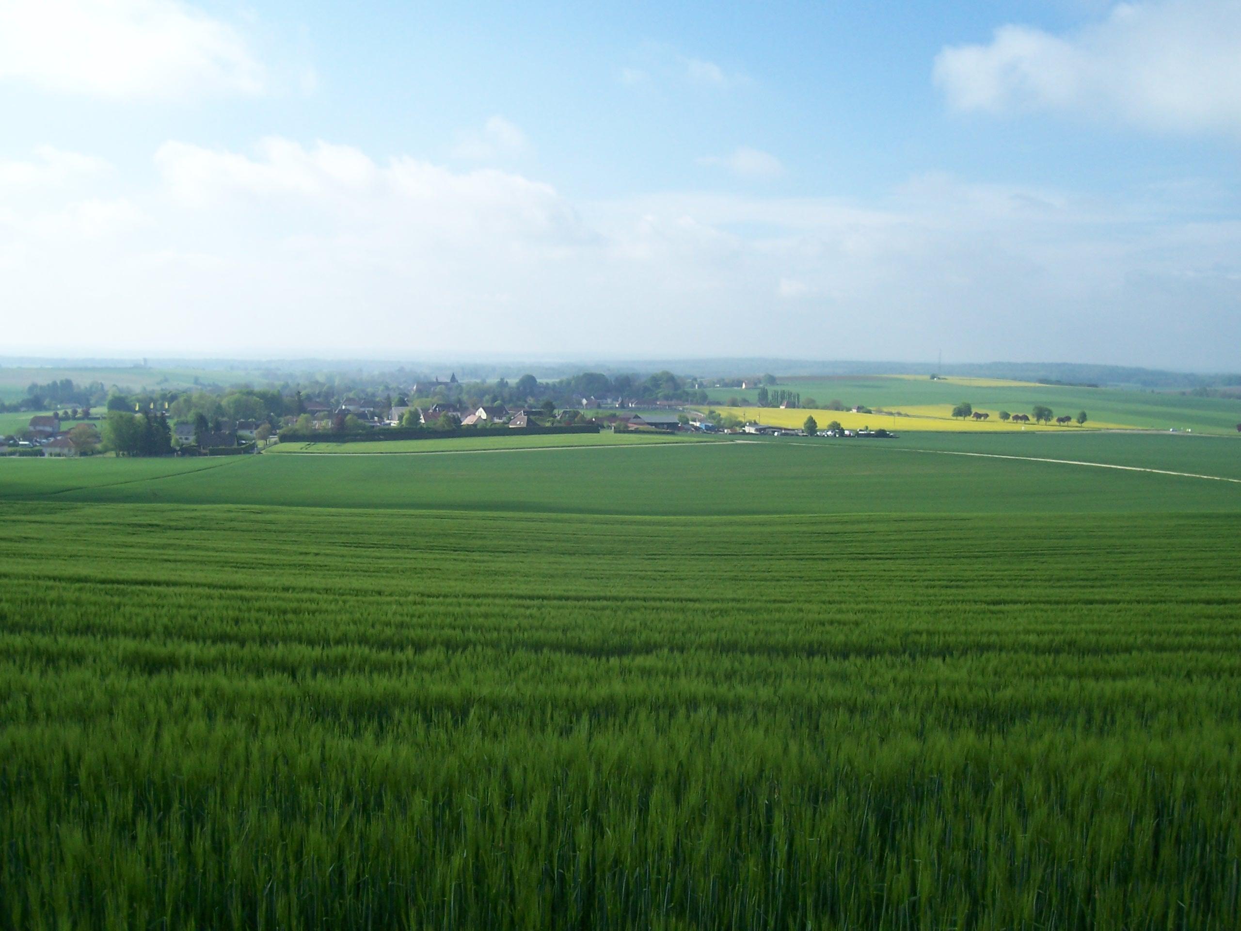 Bienvenue à Auxon, village fleuri de l'Aube